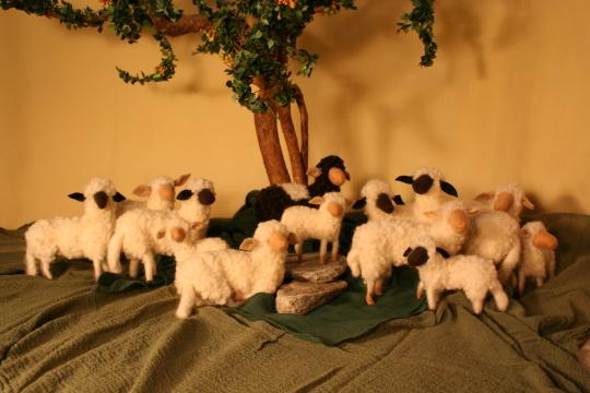 Schafherde:Tiere in unterschiedlicher Größe